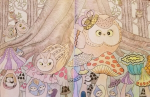 Owls in the Woods